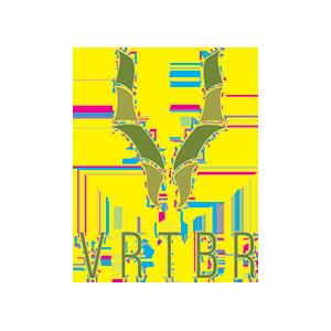 VRTBR Logo